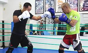 格闘技プロ選手がトレーナーのパーソナルトレーニング(総合格闘技道場コブラ会・大阪市)キックボクシングスパーリング