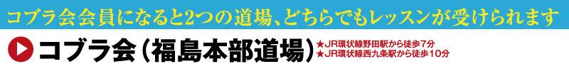 キックボクシング・柔術・総合格闘技道場コブラ会(大阪市福島本部道場)
