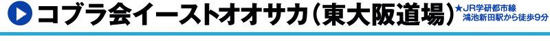 キックボクシング・柔術・総合格闘技道場コブラ会イースト(東大阪道場)