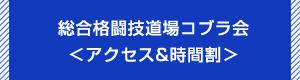総合格闘技道場コブラ会アクセス&レッスン時間割へ