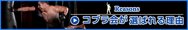キックボクシング・柔術・MMA総合格闘技を習うなら総合格闘技道場コブラ会へ(大阪市・東大阪市・豊中市)