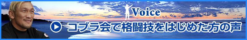 キックボクシング・柔術・MMA総合格闘技をコブラ会ではじめた方の声(ストラッサー起一選手他)